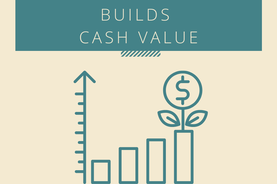 Builds cash value chart