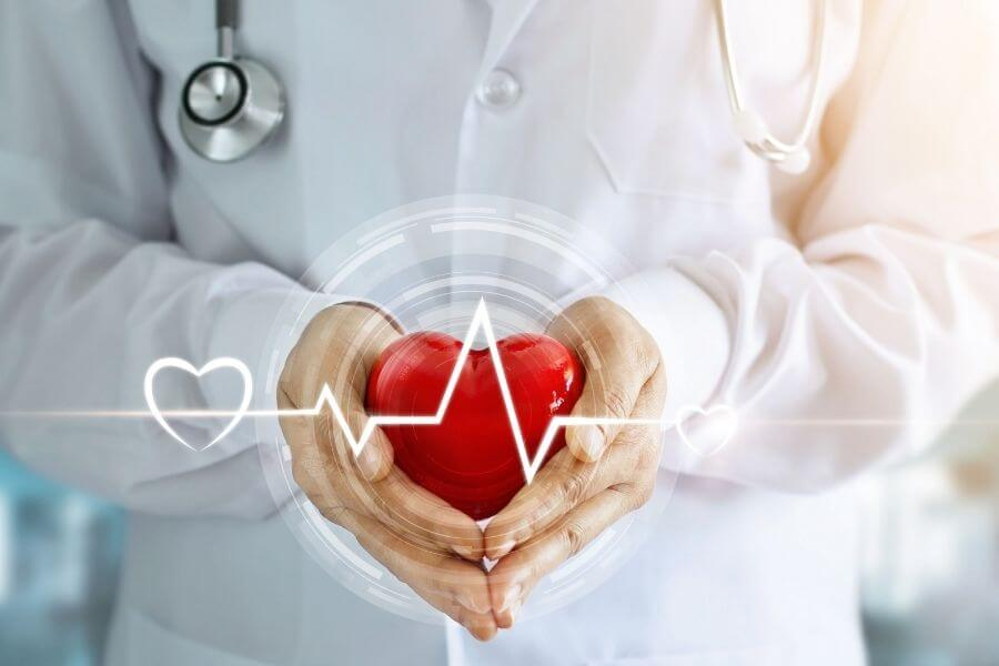 Doctor holding a heart in hand