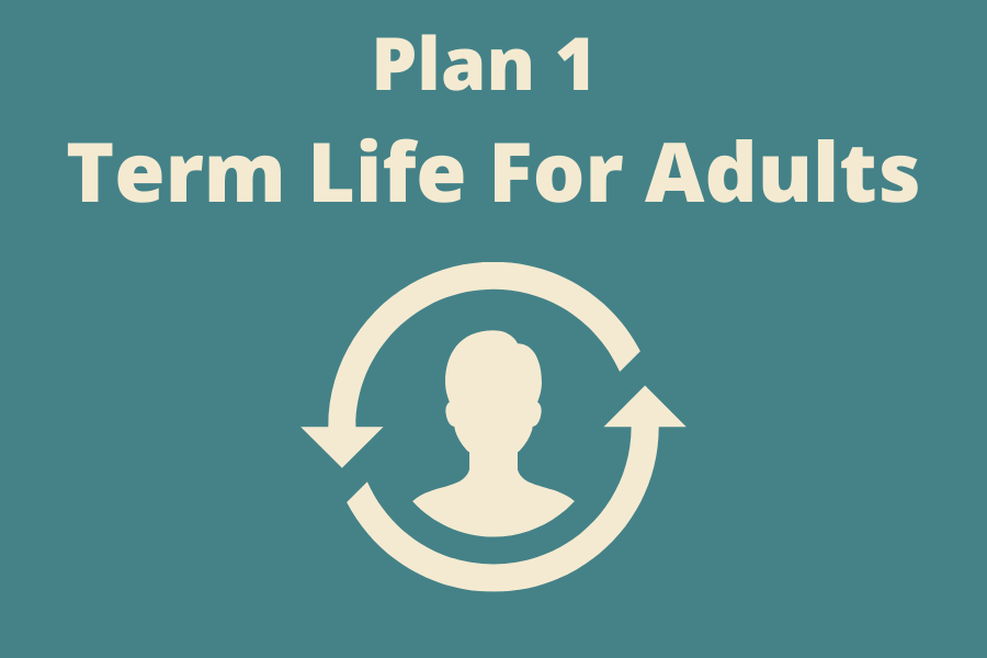 Term life for adults Plan 1