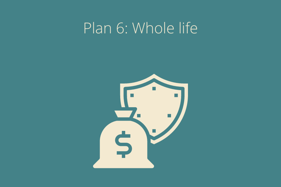 Whole life Plan with money