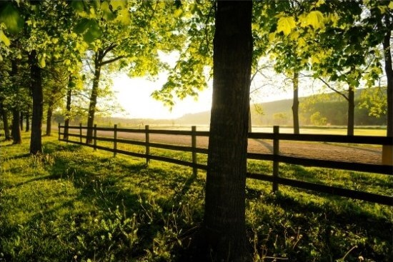 country with fence