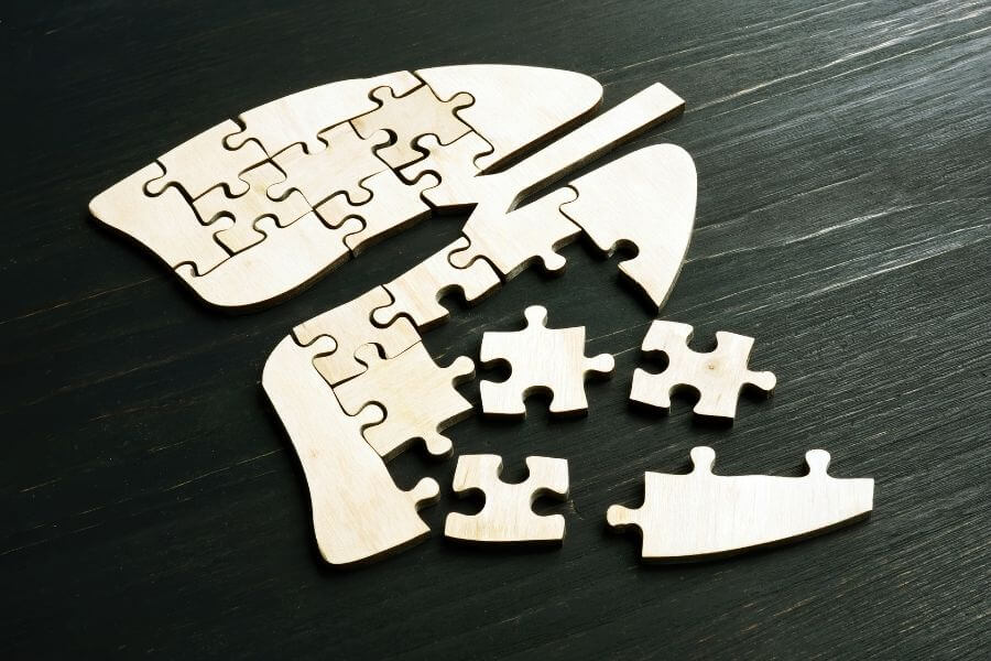 lung shaped puzzle with pieces missing